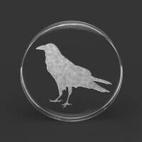 Custom Laser Engraved Clear Acrylic Plug - 'Crow' - Left