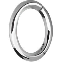 Surgical Steel Oval Hinged Rook Ring