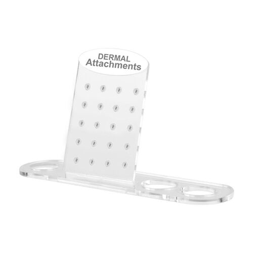 Acrylic Dermal Shaped Attachment Display